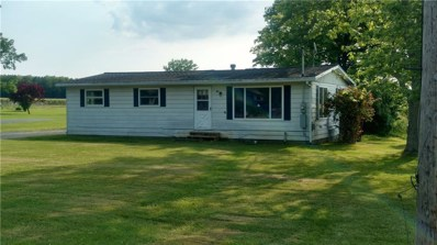 97 Old Mill Road, Brocton, NY 14716 - #: R1164314