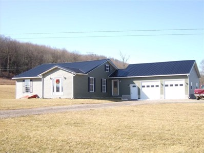 797 Snow Road, Independence, NY 14897 - #: R1164950