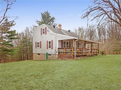 9093 Dutch Hill Road, Little Valley, NY 14755 - #: R1168471