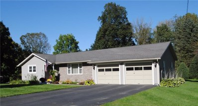 428 Whitney Valley Extension, Almond, NY 14804 - #: R1170115