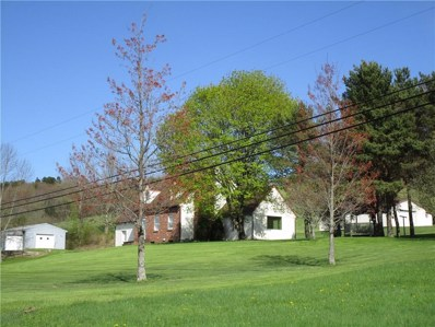 4289 Niles Hill Road, Wellsville, NY 14895 - #: R1177578