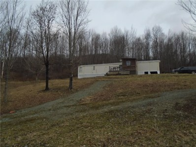 0 State Route 417 Road, Jasper, NY 14855 - #: R1185486