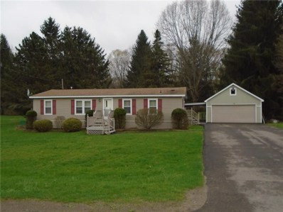 419 McHenry Valley Road, Almond, NY 14804 - #: R1189270