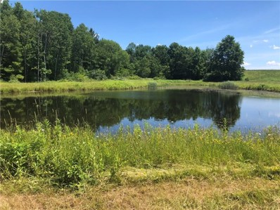 County Rt. 333 Lot 3 County Rt. 333, Thurston, NY 14821 - #: R1210308