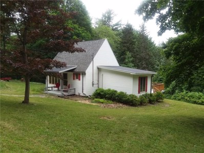 5458 Middle Road, Canadice, NY 14466 - #: R1211122