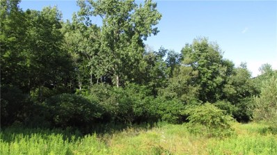 3630 County Route 60, Greenwood, NY 14877 - #: R1217049