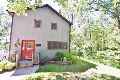 5556 State Route 15a, Canadice, NY 14560 - #: R1222425