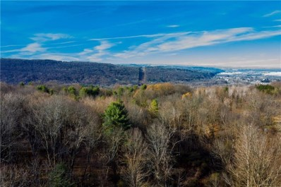 0 State Route 14, Montour, NY 14864 - #: R1278752