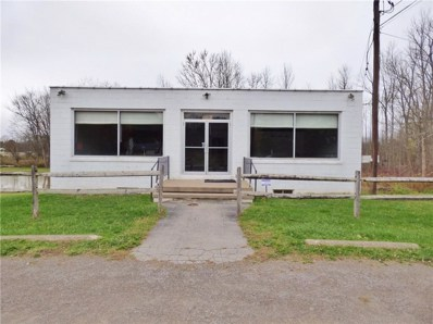 3329 State Route 21 Highway, Palmyra, NY 14522 - #: R1306388