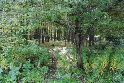 0 Chestnut (Formerly 1st) Street, Mt. Jewett-Borough, PA 16740 - #: R1309441