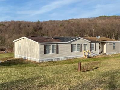 809 Snow Road, Independence, NY 14897 - #: R1316667