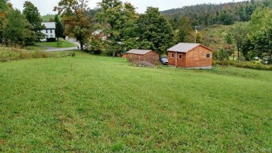 Fitch Road, Brookfield, NY 13314 - #: S1127317