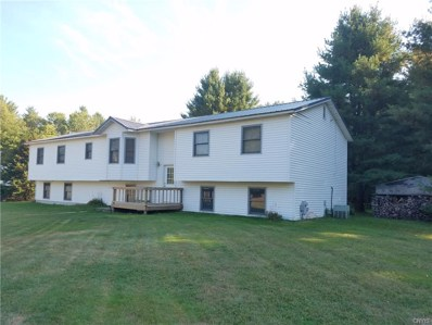 229 County Route 23A, Constantia, NY 13044 - #: S1132502