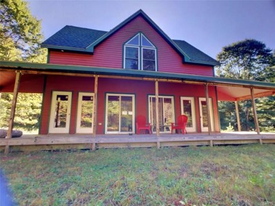 36 Detweiler Road, Albion, NY 13302 - #: S1148920