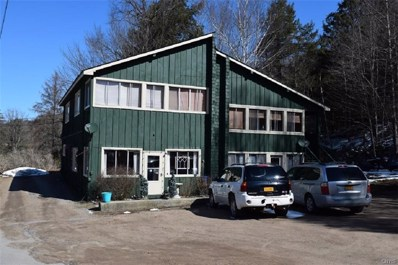 235 State Route 28, Inlet, NY 13360 - #: S1155602