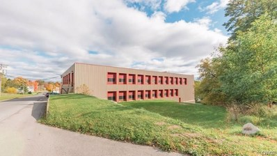 321 & 349 Lakeview Drive, Brownville, NY 13634 - #: S1157169