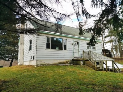 3791 County Highway 18, Pittsfield, NY 13411 - #: S1176103