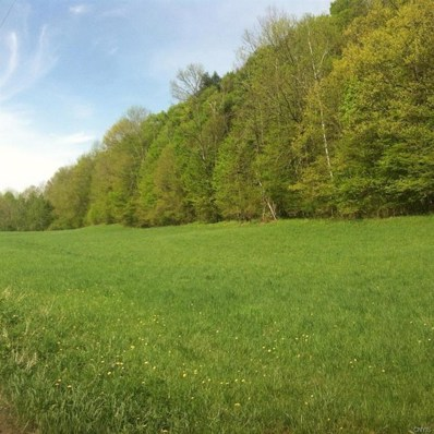 0 Route 166, Middlefield, NY 13326 - #: S1181343