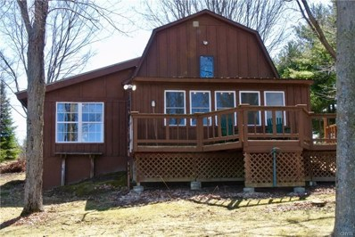 42755 Mud Lake Camp Road, Alexandria, NY 13679 - #: S1186761