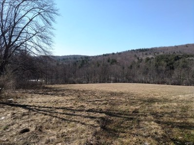 561 Copes Corners Road, Butternuts, NY 13843 - #: S1206763