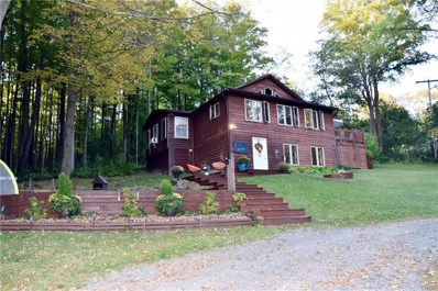 260 Camp Road, Litchfield, NY 13322 - #: S1227399