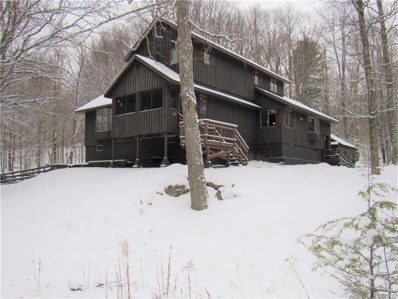 4248 Lakeview Road, Forestport, NY 13338 - #: S1242359