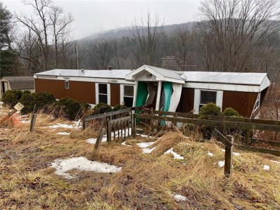 1256 State Route 221, Harford, NY 13803 - #: S1243618