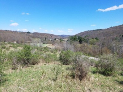 00 Sagetown Road N, Caton, NY 14858 - #: S1266182