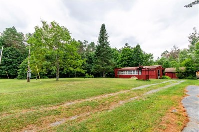 13593 Middle Branch Road, Diana, NY 13648 - #: S1279942