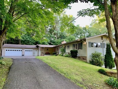 20 Hickory Grove Rd Spur, Minetto, NY 13069 - #: S1285962