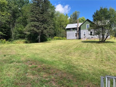 11637 State Route 812, Croghan, NY 13648 - #: S1292757
