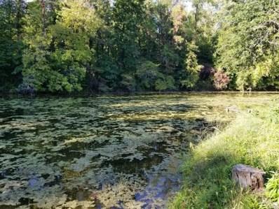 00 River Road, Galen, NY 14433 - #: S1298932