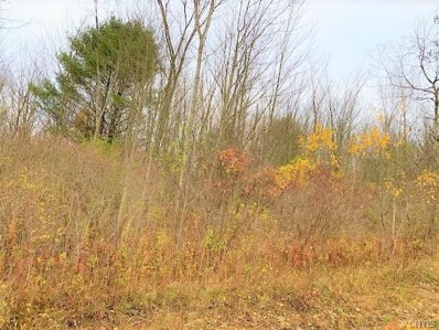 610 Wells Road, Norwich-Town, NY 13815 - #: S1305242