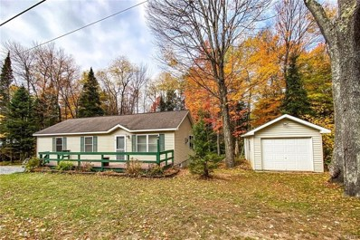 4018 Lakeview Road, Forestport, NY 13420 - #: S1305358