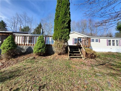 1130 Bloody Pond Road, Willet, NY 13040 - #: S1308005