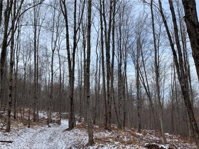 46 Wells Road, Norwich-Town, NY 13815 - #: S1309328