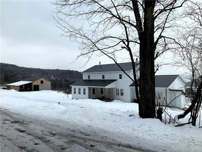 491 Mill Creek Road, Plainfield, NY 13485 - #: S1315565