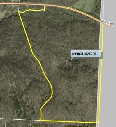Big Run Road, Stewart, OH 45778 - #: 218010635