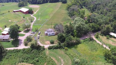 12373 Swett Hollow Road, Millfield, OH 45761 - #: 218028264