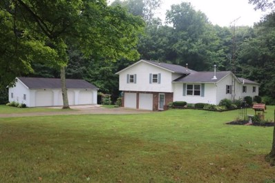 24640 Hopewell Road, Gambier, OH 43022 - #: 218028422