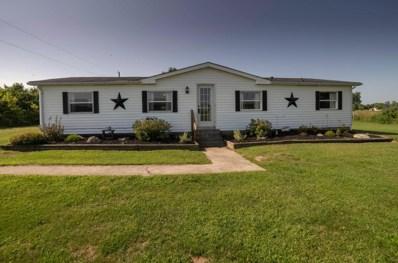 19235 Bellville Road, Marysville, OH 43040 - #: 218029351