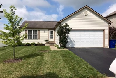 225 Overtrick Drive, Delaware, OH 43015 - #: 218031426