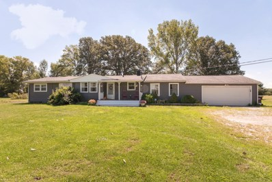 2336 State Route 521, Delaware, OH 43015 - #: 218033106
