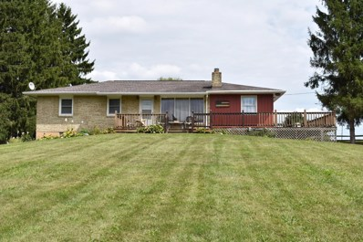 13860 Old Mansfield Road, Mount Vernon, OH 43050 - #: 218034075