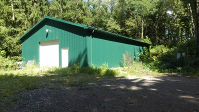 4000 State Route 314, Mount Gilead, OH 43338 - #: 218035457