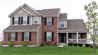 2298 Silver Hill Street, Lewis Center, OH 43035 - #: 219000723