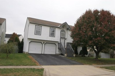 941 Okatie Drive, Galloway, OH 43119 - #: 219028216