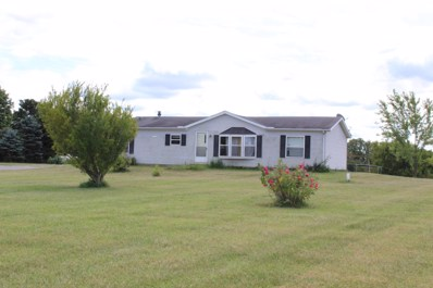 14533 State Route 739, Richwood, OH 43344 - #: 219037563