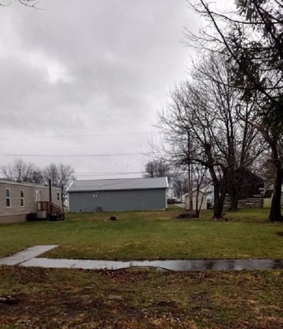 306 N McConnell Street, Alger, OH 45812 - #: 219045790