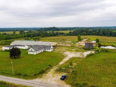 3795 County Road 29, Mount Gilead, OH 43338 - #: 220020357